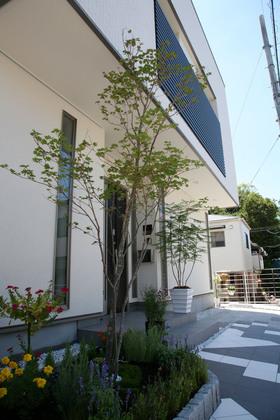 外壁の白に植栽の緑が生えています